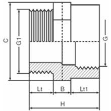 Réduction - Filetée sur R - Taraudée sur Rp 5221